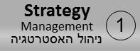 תהליך ניהול אסטרטגיית שירותי מערכות המידע – Strategy management for IT Services